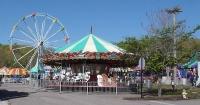 Carnival 2014 (4) (800x418).jpg
